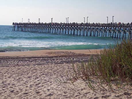 Southward bound musings from the den mother for Surf city nc fishing report