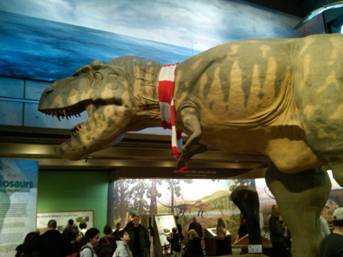 T. Rex with a scarf - Museum of Science, Boston, MA