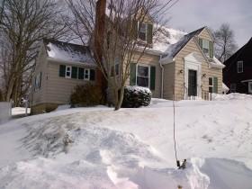 Northwest corner of my yard after the blizzard