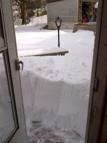 Back door to the patio